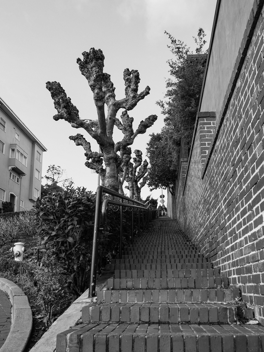 Lombard Street black and white