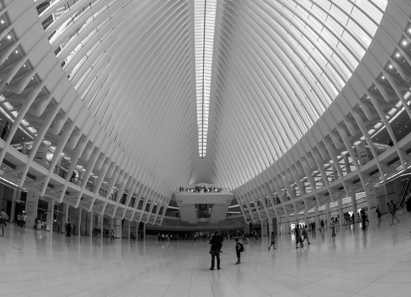 52 Magic Mondays, Megan Crandlemire Photography, 9/11 memorial, oculus, new york city, street photography NYC
