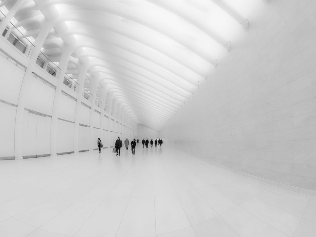 O Megan Crandlemire Tunnel of White