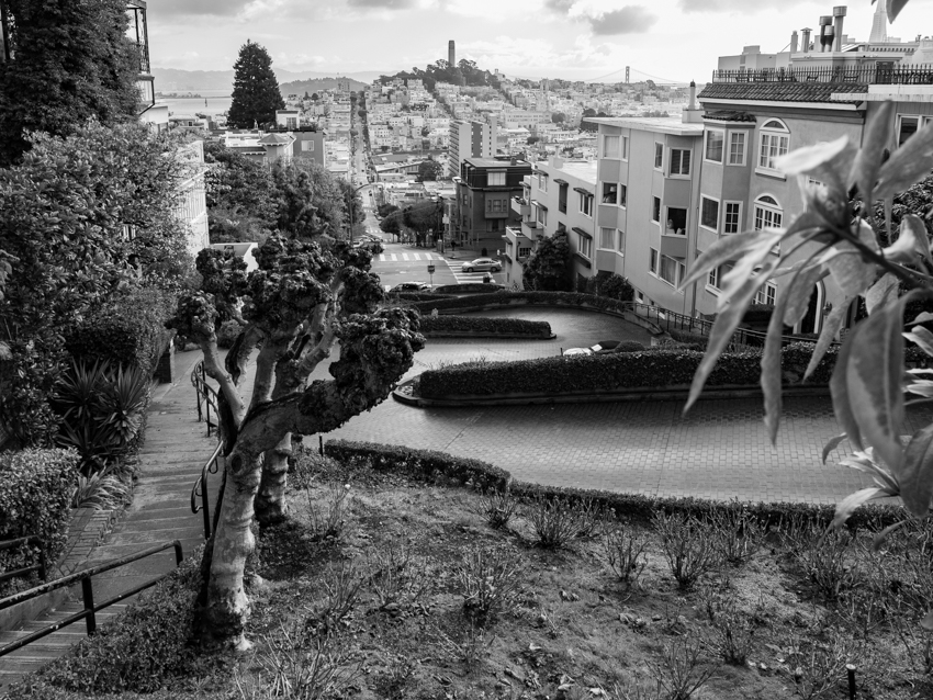 Lombard Street San Francisco black and white