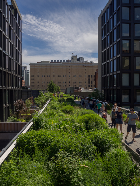 the highline, Megan Crandlemire Photography